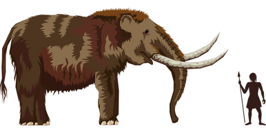 woolly mammoth illustration