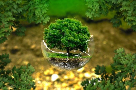 environment protection, environmentally