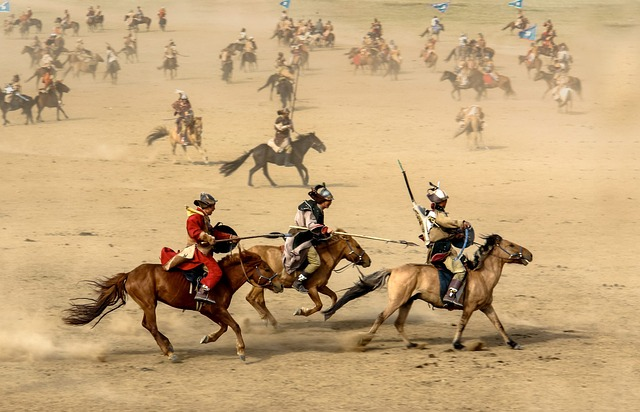 Mongolia, horse used in battlefield demonstration