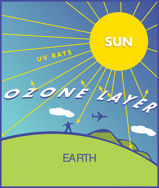 diagram ozone layer illustration