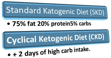 Ketogenic diet types